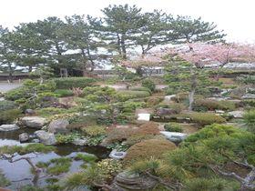 大浴場を貸切できる宿はココ!伊豆片瀬温泉「お宿しらなみ」|静岡県|トラベルjp<たびねす>