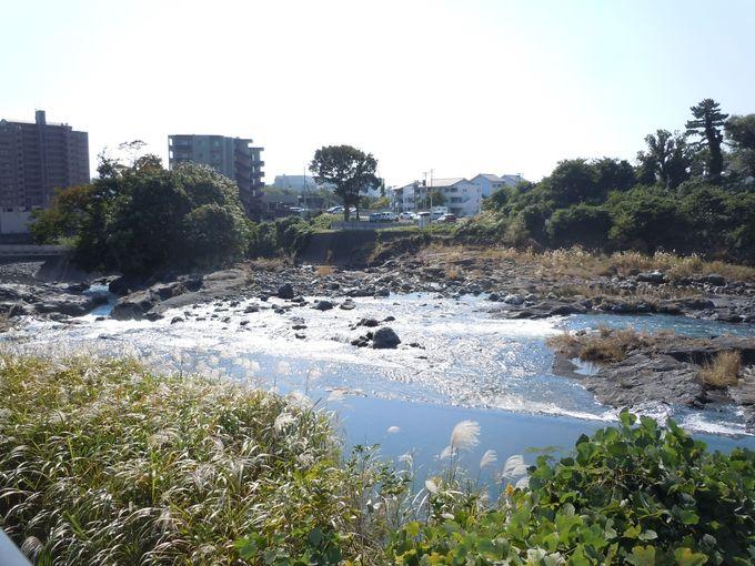 湧水を讃える美しい川