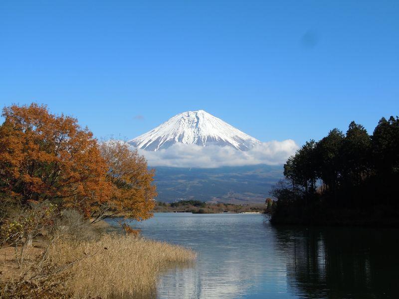 富士山周辺の絶景紅葉スポット!富士宮「田貫湖&白糸の滝」