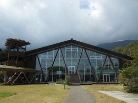 富士山麓の自然学校!富士宮「田貫湖ふれあい自然塾」|静岡県|トラベルjp<たびねす>
