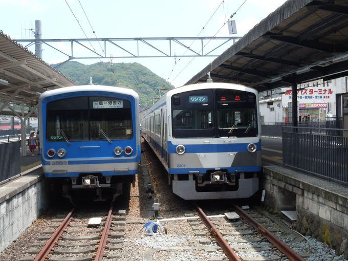 白と青の富士山カラーが美しい「いずぱっこ!?」でグルメの旅へ!