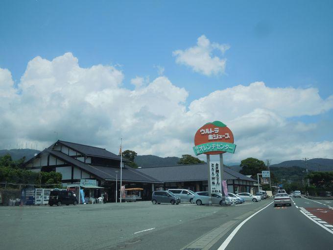 河津「伊豆オレンヂセンター」でウルトラ生ジュースと河津桜型のおまんじゅうを味わおう!