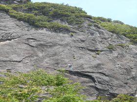 一石三鳥で楽しめる!?伊豆の国「城山ハイキングコース」|静岡県|トラベルjp<たびねす>