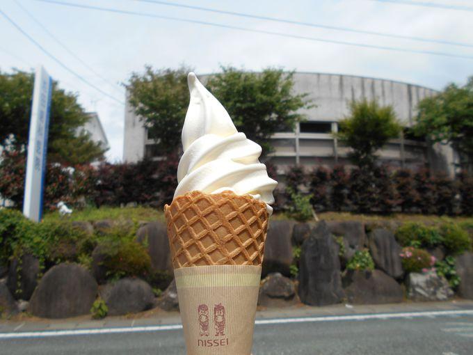 老舗豆腐店で頂く!豆乳入りソフトクリーム