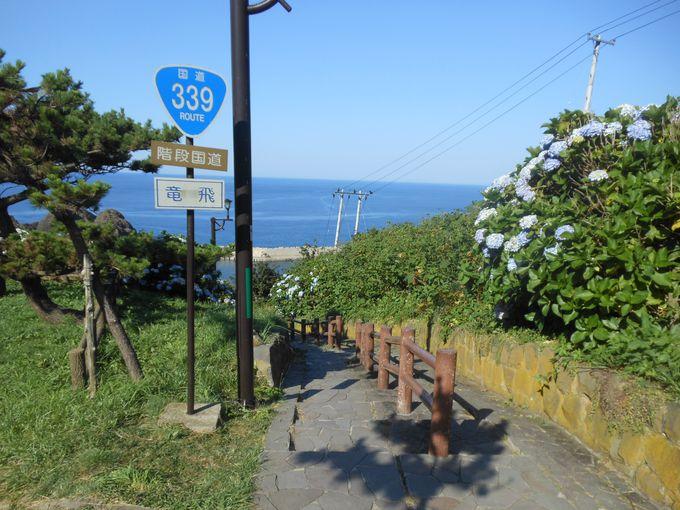 日本で唯一の歩行者専用国道「階段国道339号」