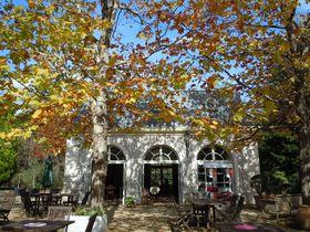 秋は希少なバラの実も見られる!伊豆「河津バガテル公園」|静岡県|トラベルjp<たびねす>