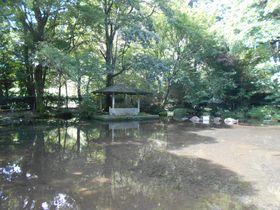 東伊豆は公園巡りが面白い!足湯から庭園までお勧め公園4選|静岡県|トラベルjp<たびねす>