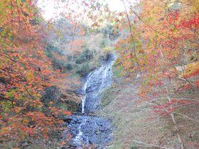 伊豆で見つけたっ!知られざる穴場な紅葉スポット「旭滝」|静岡県|トラベルjp<たびねす>