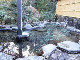 なんと大浴場も貸切OK!伊豆・河津「七滝温泉ホテル」|静岡県|トラベルjp<たびねす>