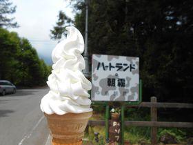 富士山麓屈指の酪農地帯!朝霧高原の地域限定ソフト&ジェラートが美味い|静岡県|トラベルjp<たびねす>