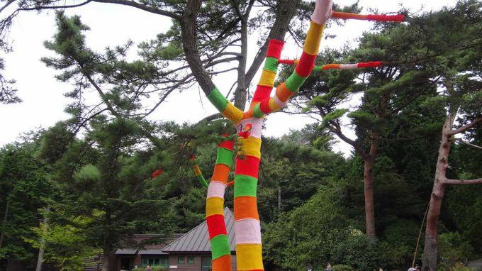 アート作品を探しながら園内散策♪鑑賞チケットでアーティストグッズが貰える特典も!
