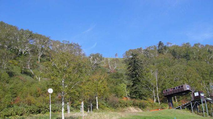 富良野ロープウェーで富良野の町を一望!紅葉も綺麗!11月からはスキー場に