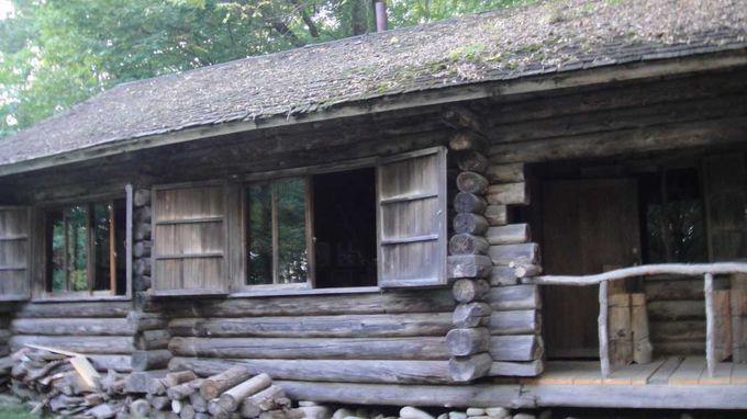 ロケ地が点在する麓郷の森。あれ?焼けたはずの丸太小屋も!