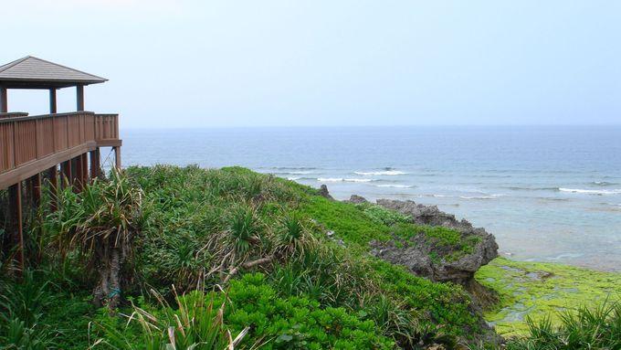 コバルトブルーの海を眺めながら海岸遊歩道をぶ〜らぶら