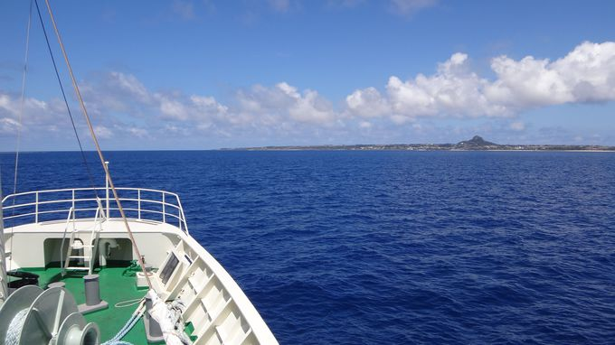 伊江フェリーで島まで30分の爽快クルージング!