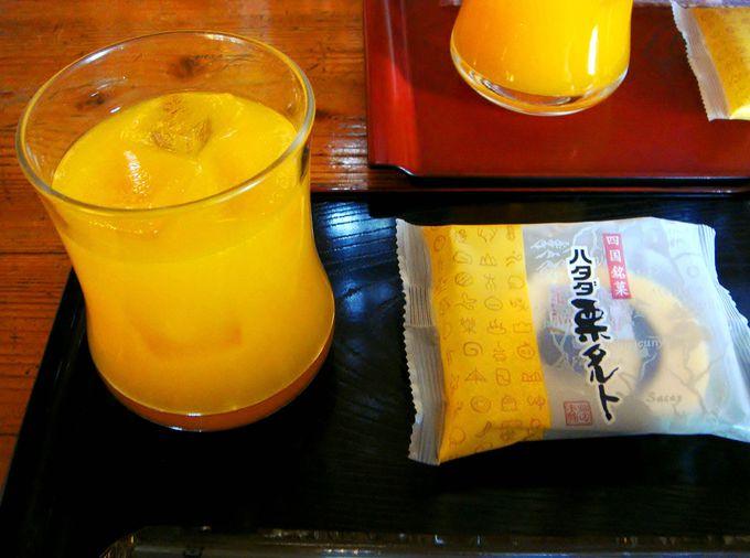 本丸の茶屋で『日本一の美味しい愛媛のみかんジュース』を飲もう!