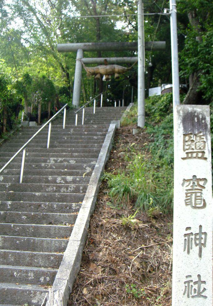 穴場スポット『鹽竈神社』へ!用意すると便利な物と道中を楽しむポイント