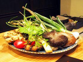 吉野・高野山へのアクセス良好!ノスタルジックな一棟貸し「旅宿やなせ屋」と「五條 源兵衛」の絶品料理|奈良県|トラベルjp<たびねす>