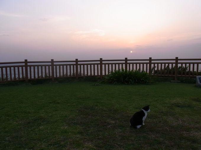 知念岬公園は海に突き出る、緑の芝生豊かな憩いの場