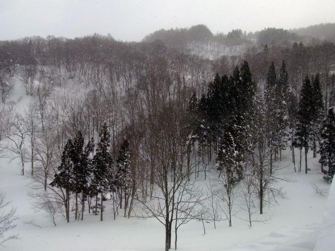パワースポット月山は出羽三山の1つ!志津温泉が裾野に広がる雪の名所!