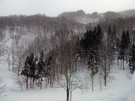 絶景!一面の銀世界を歩くパワースポット山形・月山のスノーシューと雪見温泉を楽しもう!|山形県|トラベルjp<たびねす>