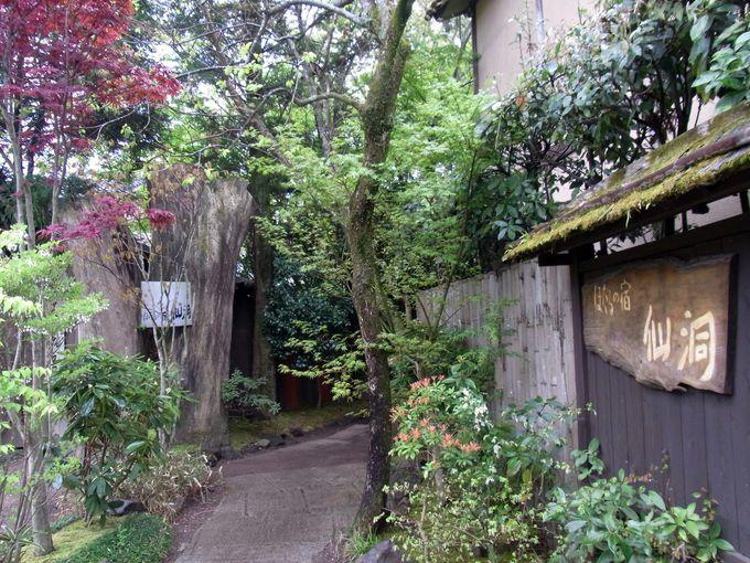 由布院散策にぴったりの立地「ほたるの宿・仙洞」