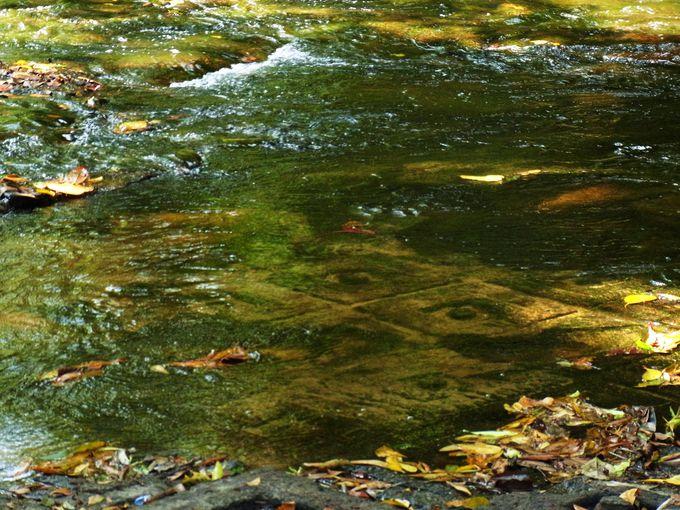 水中には数々のレリーフが