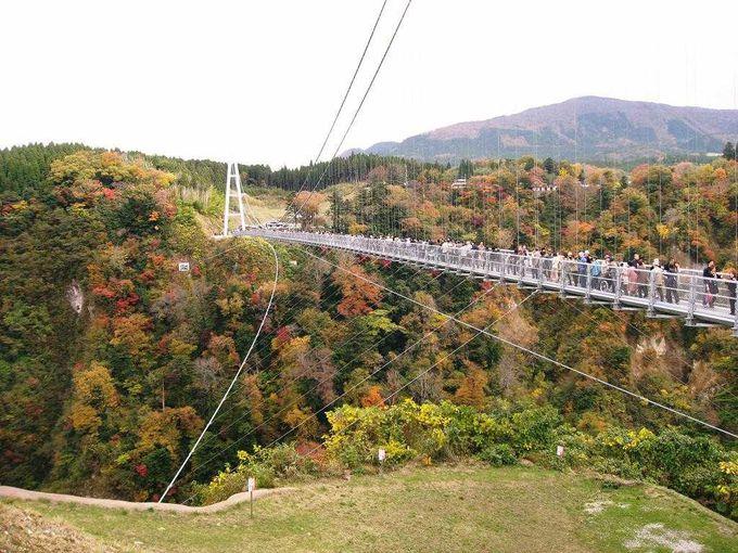 大分観光の人気スポット!天空の散歩道「九重夢大吊橋」