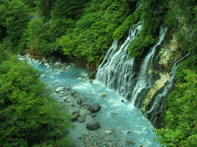 コバルトブルーの白ひげの滝