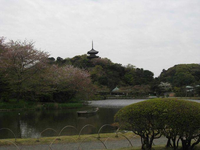三溪園の象徴である「旧燈明寺三重塔」