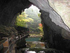 地下100mの迷宮にご招待 日本最大級の巨大鍾乳洞 「秋芳洞」