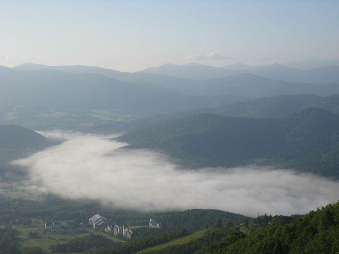 観光地としてグランプリを受賞した雲海テラス