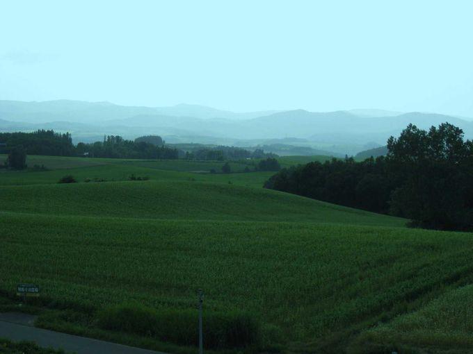 北西の丘展望公園からの眺望