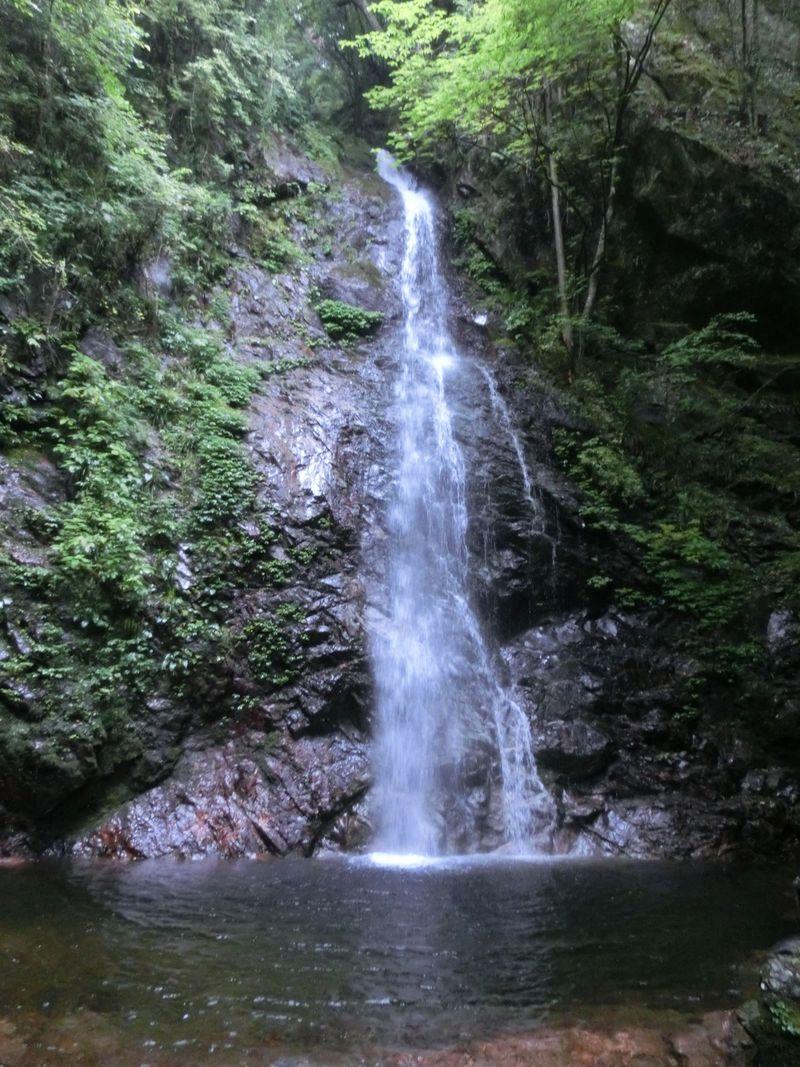東京にもありました日本の滝100選!!檜原村にある「払沢の滝」は癒しのスポット