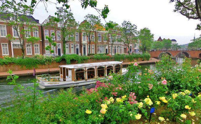 美しい運河