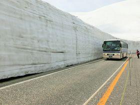 雪の大谷ウォークも体験!立山黒部アルペンルートを通り抜けよう!|富山県|トラベルjp<たびねす>