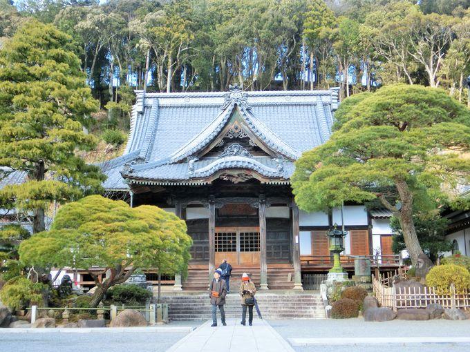 春には修禅寺寒桜が美しい