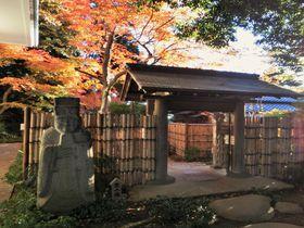 世田谷にある穴場の紅葉名所「五島美術館」の美しい庭園は見どころいっぱい!|東京都|トラベルjp<たびねす>