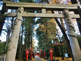 鳥居に龍が巻き付く!?パワーが溢れる東京「馬橋稲荷神社」|東京都|トラベルjp<たびねす>