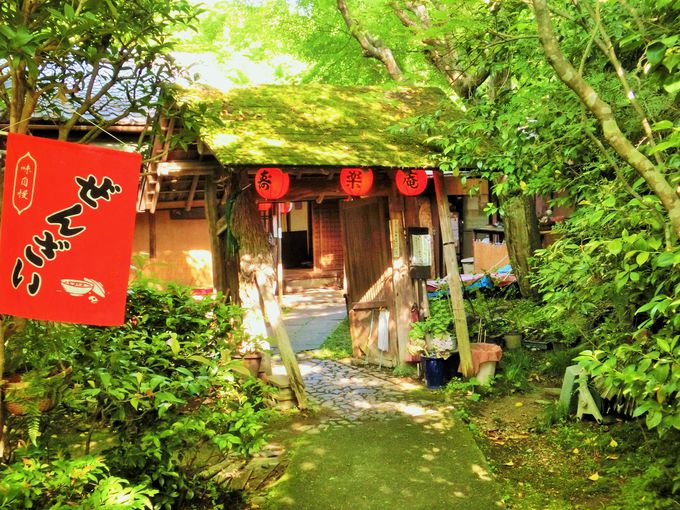 木立の中にひっそりと佇む寿楽庵