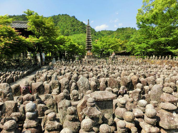 京都魔界の入り口!?