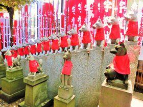 稲荷でも寺院!?イケメンの狐がいっぱい「豊川稲荷東京別院」|東京都|トラベルjp<たびねす>