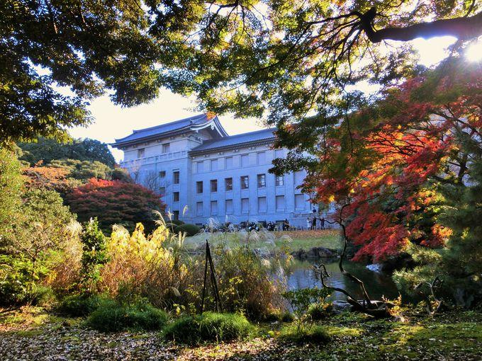 春と秋に公開される庭園