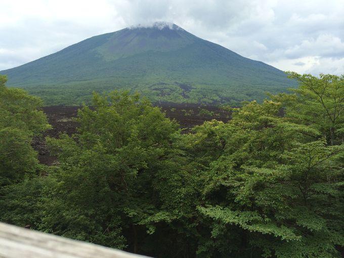 まずは名峰岩手山を愛でる