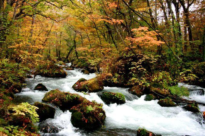 とりあえずは石ヶ戸まで、がっつり歩きたいなら焼山まで歩こう