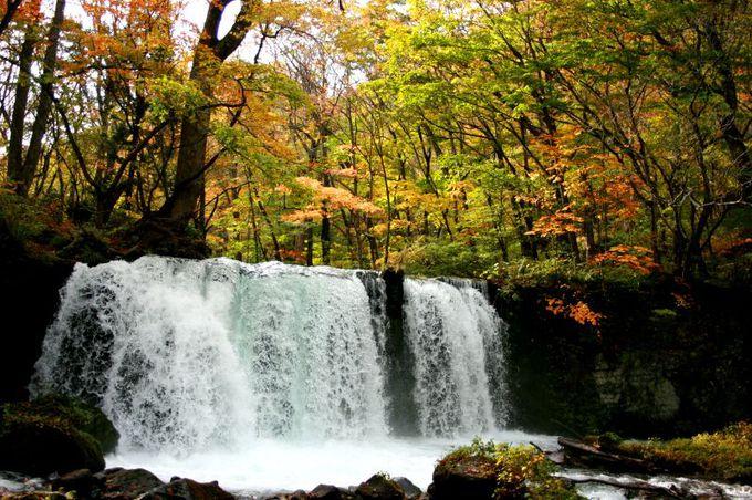 紅葉の中に浮かぶ、幻想的な水のカーテン
