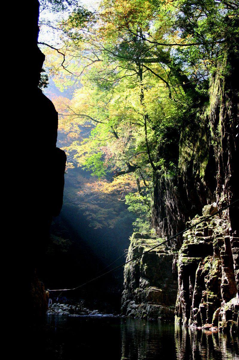 豊かな色彩が織り成す山紫水明の絶景峡谷!広島県「三段峡」の紅葉風景!!