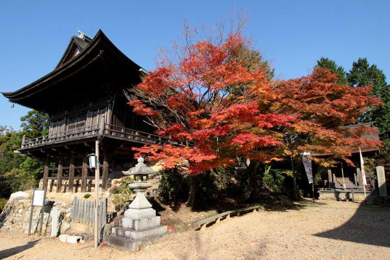 晩秋には木々が色付き、紅葉狩りにも最適!