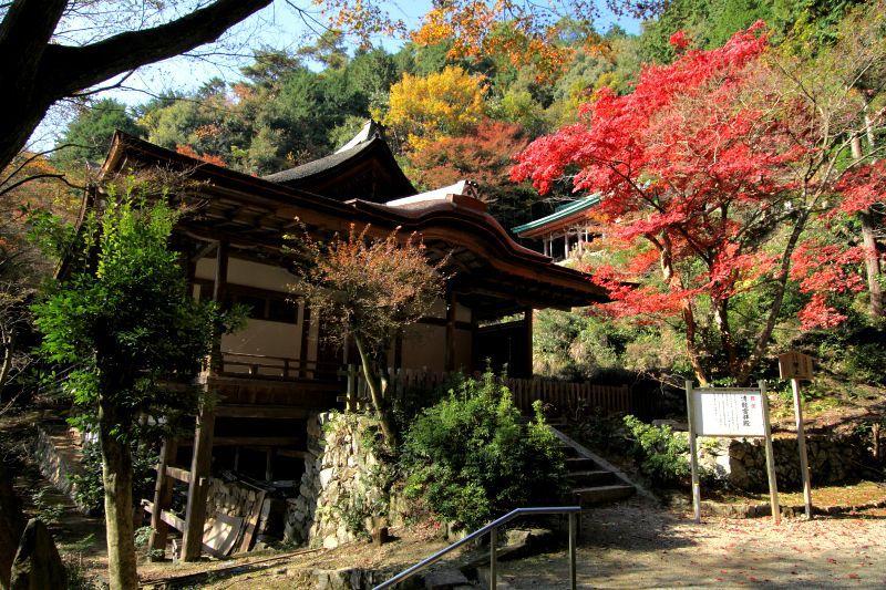山上の国宝と自然に癒される、世界遺産「醍醐寺」の神髄は上醍醐にあり!