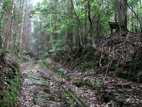 瀬戸内の自然と歴史!四国遍路で歩きたい「伊予遍路道」5選